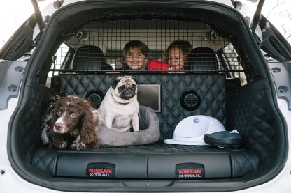 426183284_Nissan_X_Trail_4Dogs.jpg