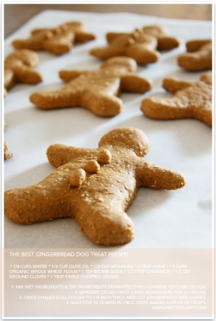 DIY-Gingerbread-Dog-Treats-Pretty-Fluffy-3-1