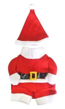 3D Santa Costume