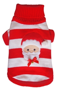 Jingle Santa Jumper